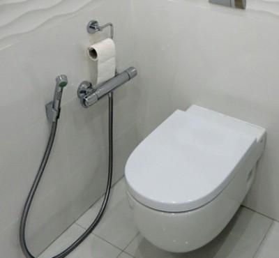 gigienicheskij-dush-dlya-unitaza